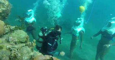 Plongée en scaphandre en Guadeloupe: Aquatique aventure