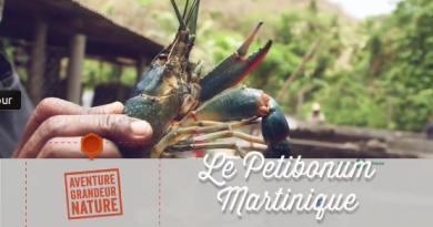 Restaurant Petitbonum en Martinique