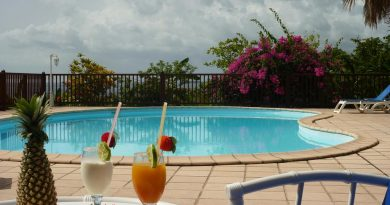 Séjour Guadeloupe demi pension : résidence pomme cannelle