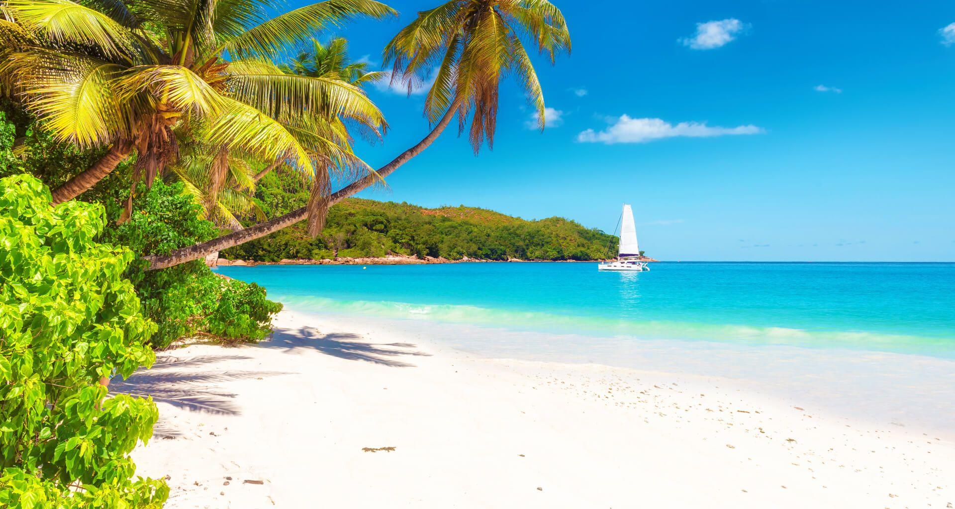 Magnifique Plage des Caraïbes