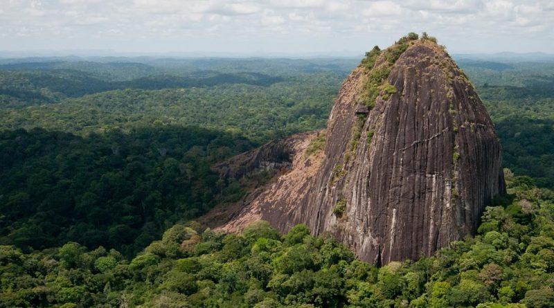 Parc amazonien guyane, réserve naturelle , biosphere riche en faune et flore