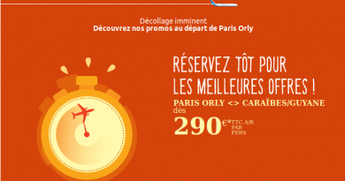 Promo Air Caraibes: promo vol Guadeloupe, Martinique et Guyane