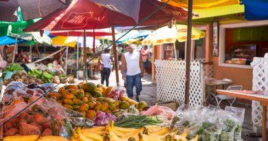 Marché de Sainte Lucie aux Caraibes, Petites Antilles