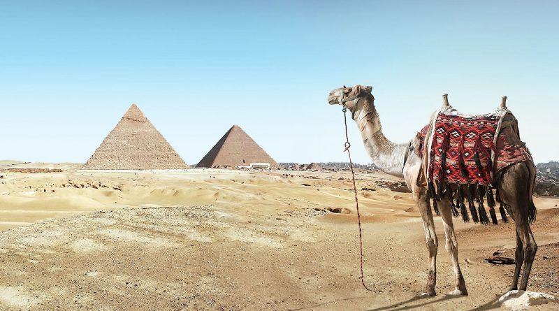 Partir en Egypte: les période et moments pour visiter les sites touristques