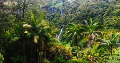 chute ile de la Réunion, Océan Indien