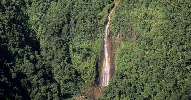 Visiter la parc national de Guadeloupe, ce qu'il faut faire et voire , randonnée