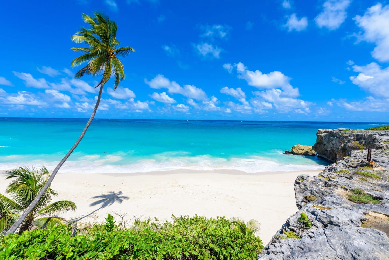 Que faire, que visiter à la Barbade: archipel des Caraïbes aux Petites Antilles
