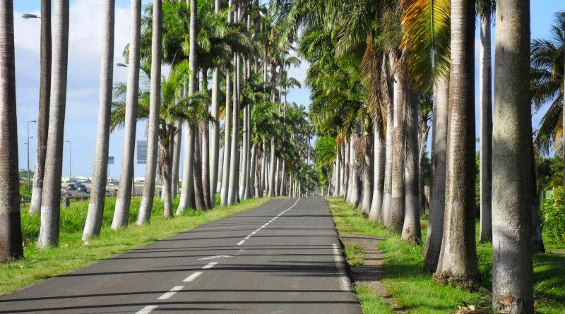 Visiter Capesterre belle eau , région Basse Terre Guadeloupe Antilles françaises. Les choses à visiter et à faire