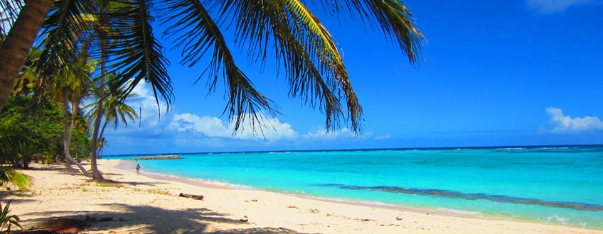 Plage de Grande Anse, dans la région de grande terre en Guadeloupe.