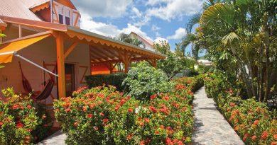 Résidence Simona Guadeloupe : jardin tropical