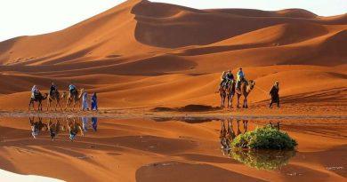 Partir en Egypte pour aller visiter les Pyramides de Gizeh