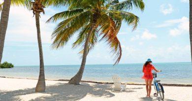 Vol Martinique pas cher : billet d'avion Paris Fort de France