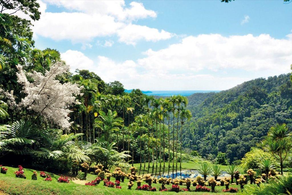 Jardin Balata : lieu à découvrir en Martinique lors d'un séjour avec Pierre et vacances