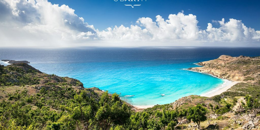 Anse Saline Belle plage de Saint Barthélémy aux Antilles
