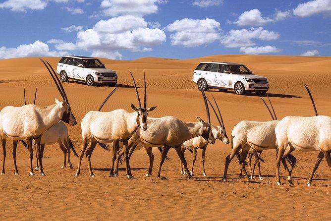 faire un safari dans le désert de Dubai