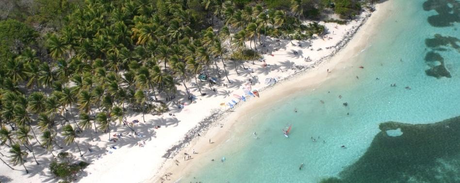Faire un tour à la plage de Sainte Anne en Martinique