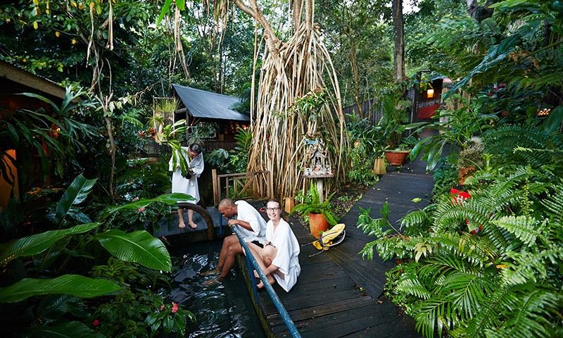 Ecologe Guadeloupe, location de vacances écologique dans la nature