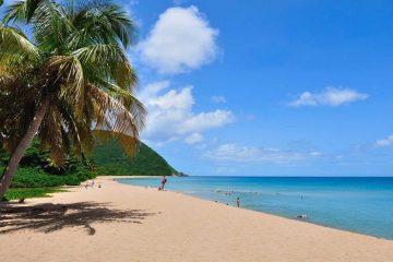 Plage de Grande Anse - Guadeloupe - Antilles françaises