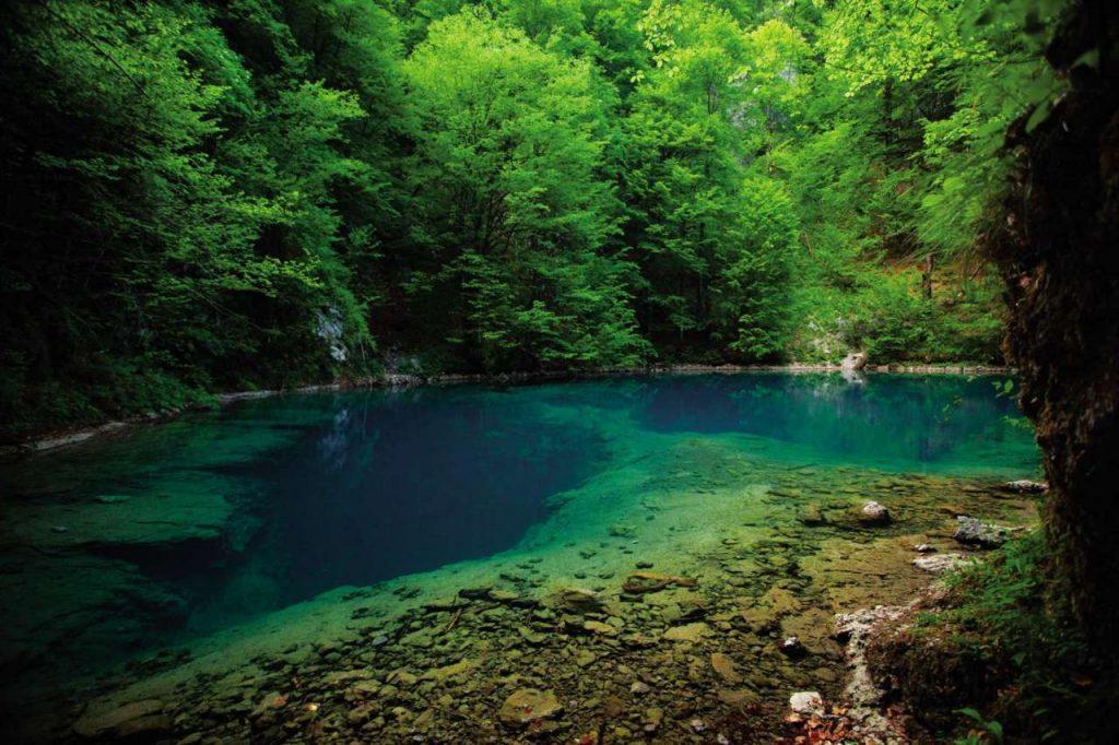 Risnjak : parc national à visiter en Croatie