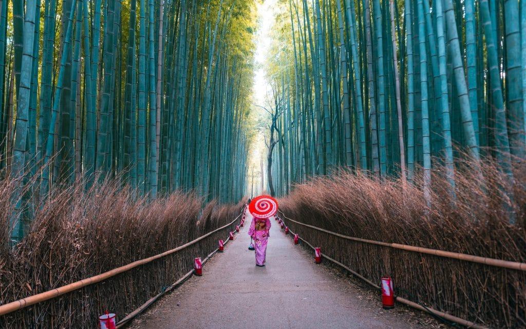 meilleur période pour aller au Japon