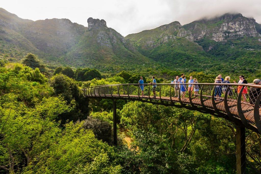 Visiter le jardin botanique de Kirstenbosch à Cape Town