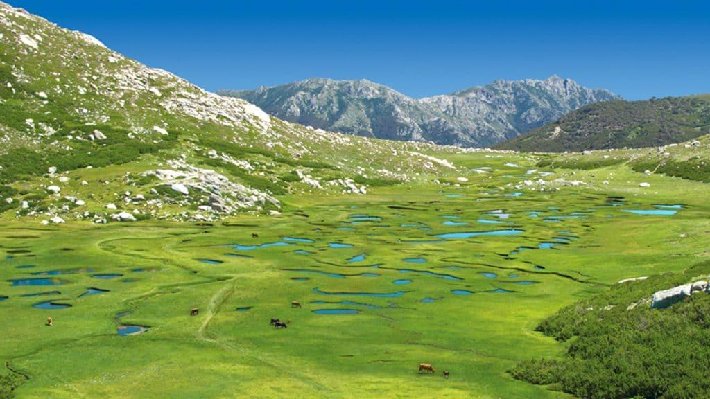Aller au parc naturel regional de Corse