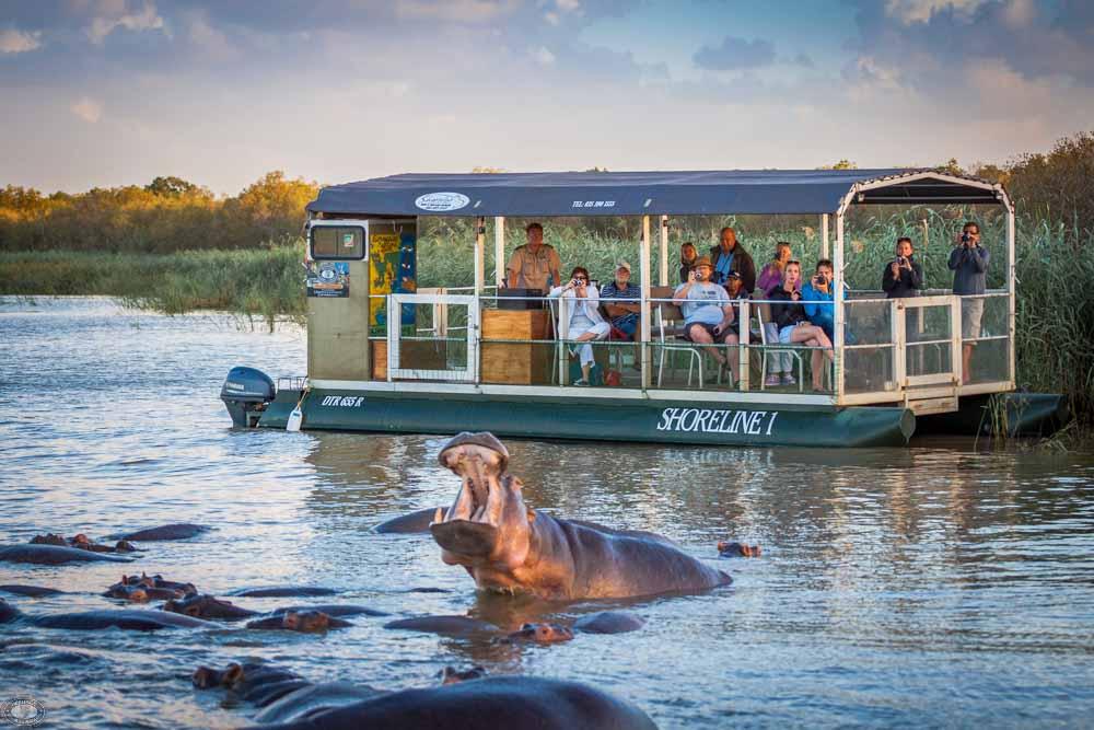 faire une excursion à Sainte Lucie et voir les hippopotames