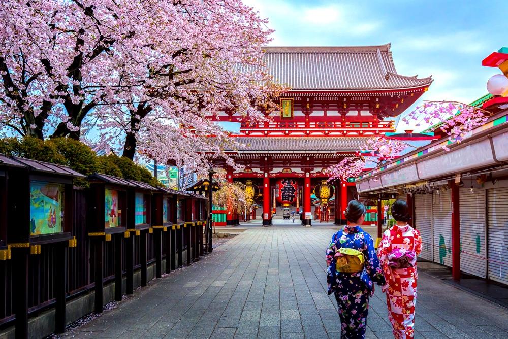 Partir au Japon en août et visiter Tokyo et ses temples