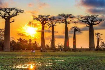 Partir à Madagascar en octobre