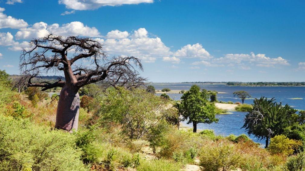 Paysage Casamance au Sénégal au mois de février