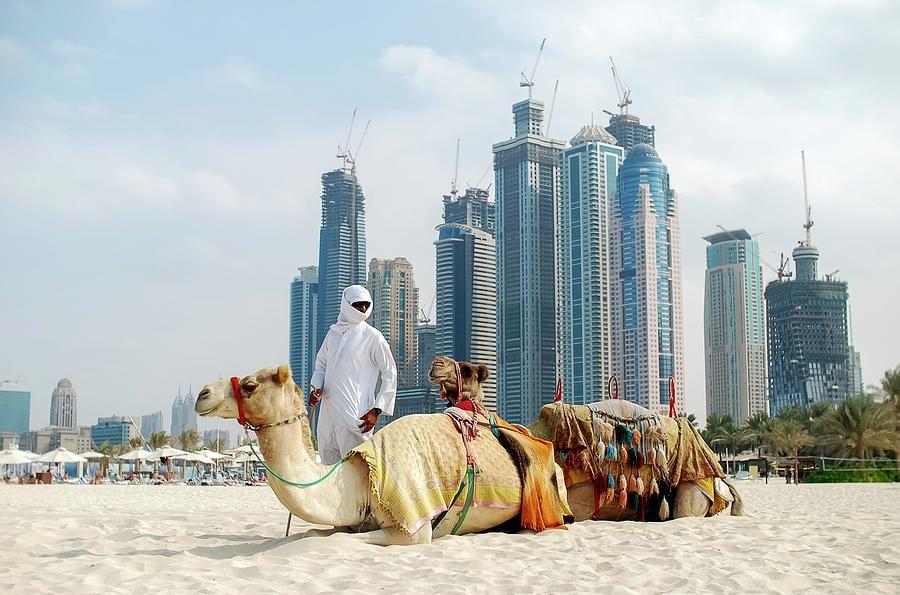 Dubai Paysage