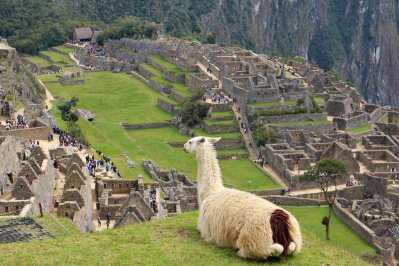 Visiter le Machu Picchu e août au Pérou