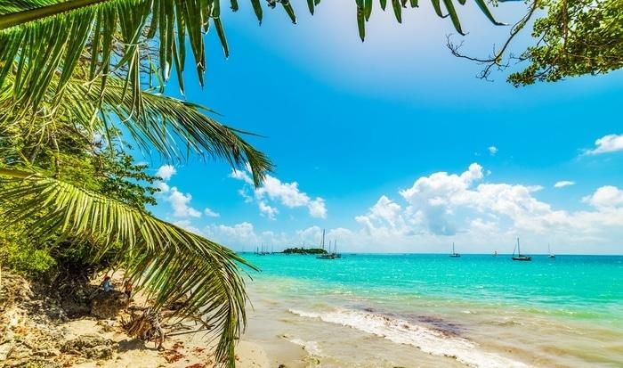 Aller en voyage en Guadeloupe en novembre