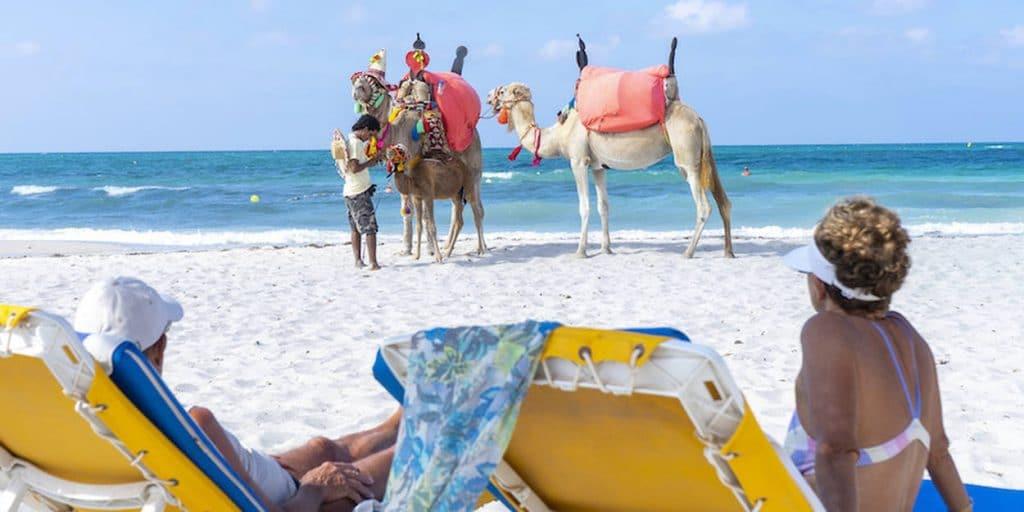 Aller à Djerba en Tunisie en octobre