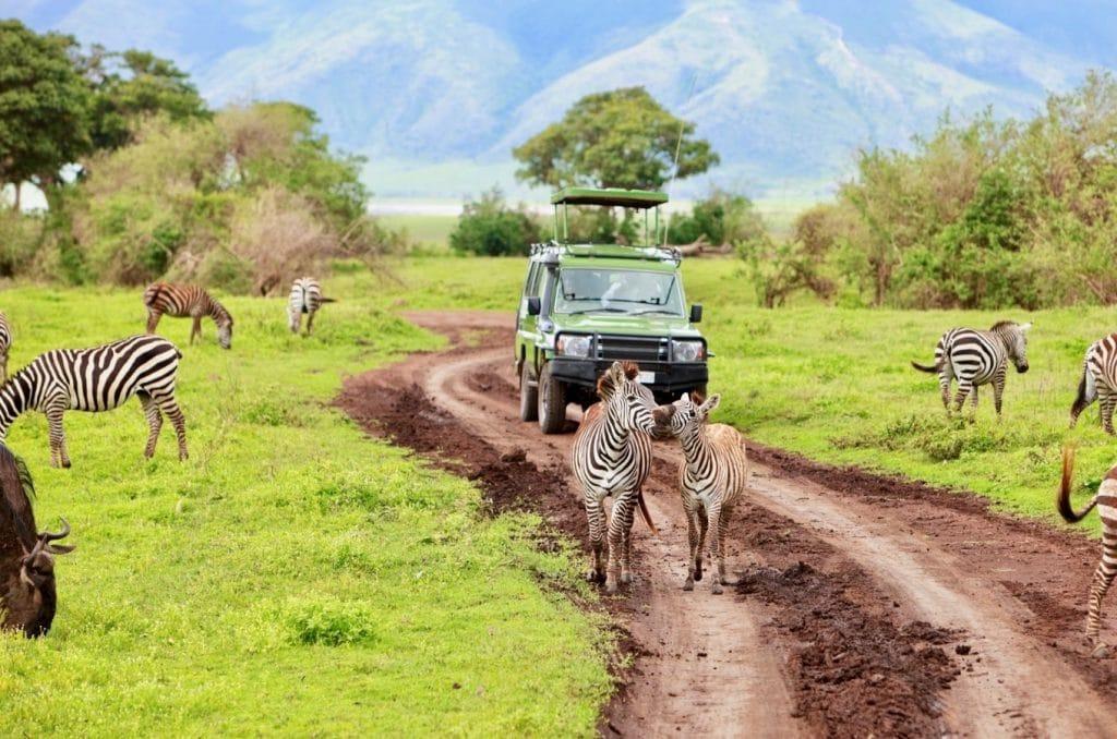 Safarai en Tanzanie au Parc Ngorongoro