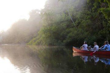 Quand partir visiter le fleuve amazonien en Guyane