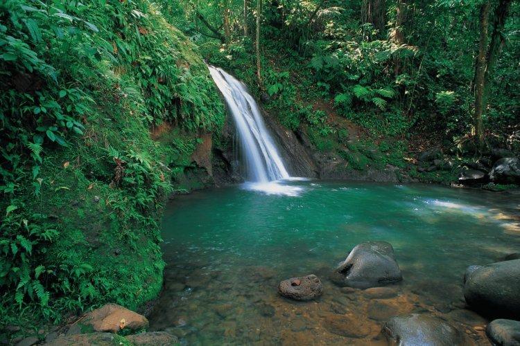 Que faire en Guadeloupe : Visiter la Cascade aux Écrevisses