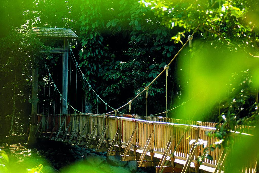 faire une visite du parc national du Guadeloupe