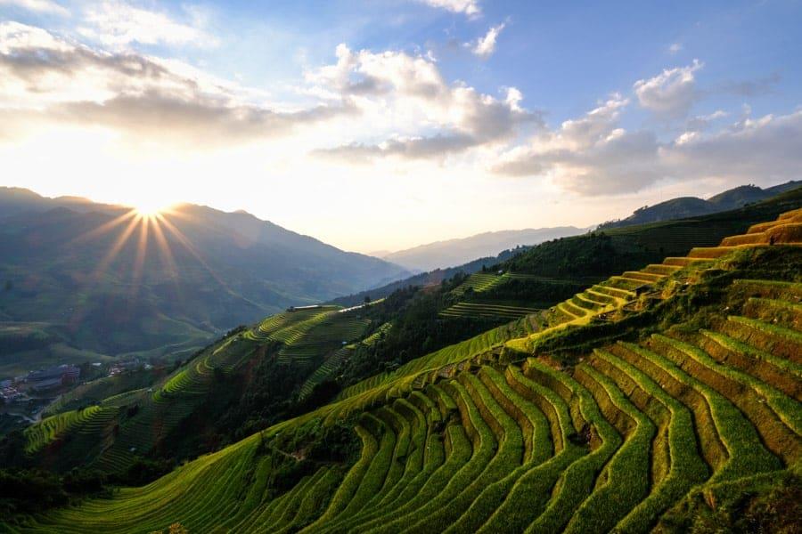 Paysage rizière nord vietnam , destination sans quarantaine
