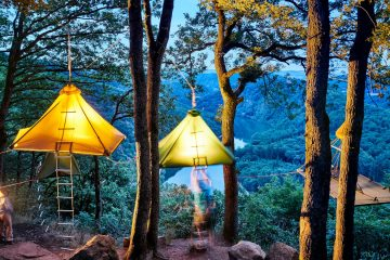 camping sauvage forêt